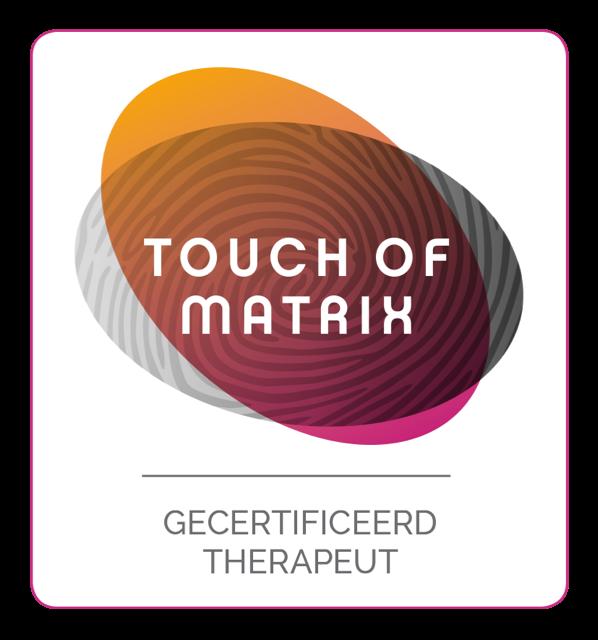 Afbeeldingsresultaat voor logo touch of matrix